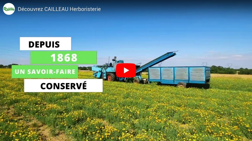 Go behind the scenes at Cailleau Herboristerie in video